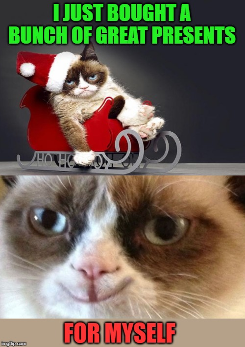 Happy Holidays To Me | I JUST BOUGHT A BUNCH OF GREAT PRESENTS FOR MYSELF | image tagged in memes,grumpy cat,cat,black friday,grumpy cat christmas,selfish | made w/ Imgflip meme maker