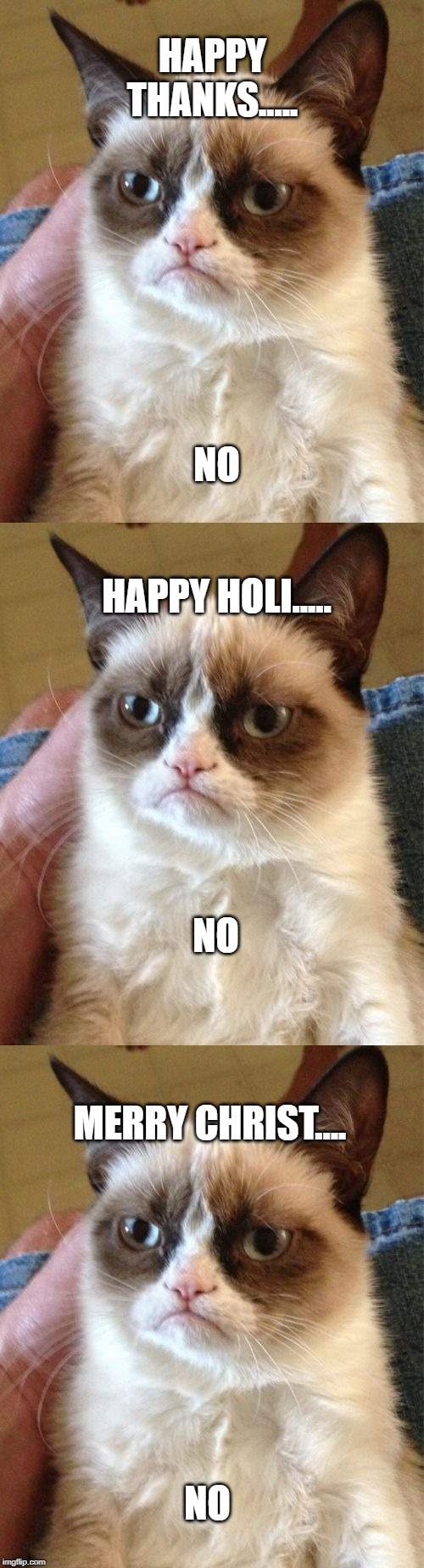 HAPPY THANKS..... NO HAPPY HOLI..... NO MERRY CHRIST.... NO | image tagged in memes,grumpy cat | made w/ Imgflip meme maker