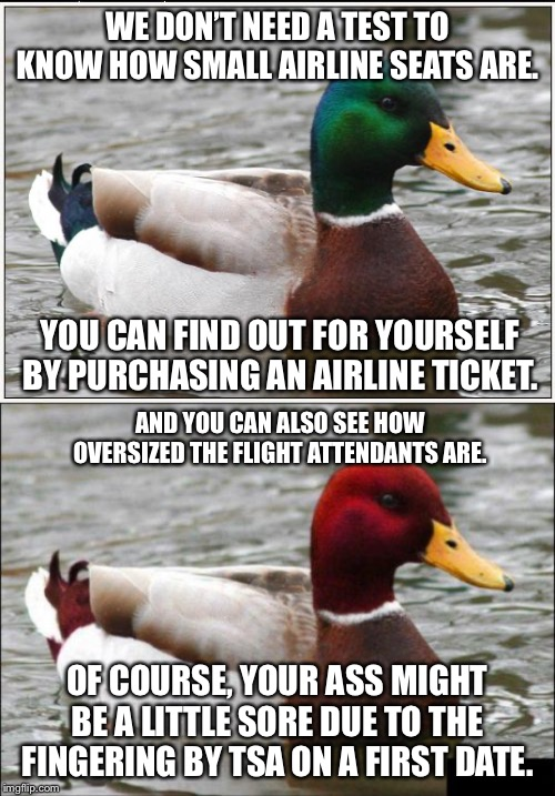Big butts small seats | WE DON'T NEED A TEST TO KNOW HOW SMALL AIRLINE SEATS ARE. YOU CAN FIND OUT FOR YOURSELF BY PURCHASING AN AIRLINE TICKET. AND YOU CAN ALSO SE | image tagged in memes,actual advice mallard,malicious advice mallard,fat,airplane,bad joke | made w/ Imgflip meme maker