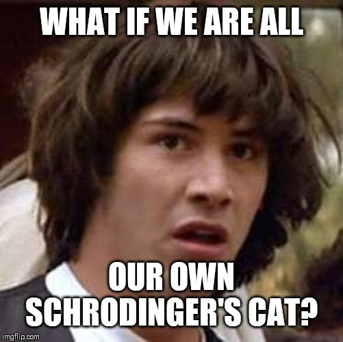 This meme did not exist until you observed it | WHAT IF WE ARE ALL OUR OWN SCHRODINGER'S CAT? | image tagged in memes,conspiracy keanu | made w/ Imgflip meme maker