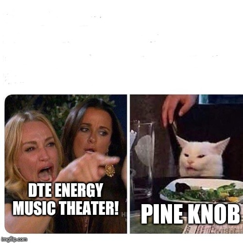 Woman and cat | DTE ENERGY MUSIC THEATER! PINE KNOB | image tagged in woman and cat | made w/ Imgflip meme maker