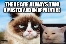 Cat Master and Apprentice | THERE ARE ALWAYS TWO A MASTER AND AN APPRENTICE SSHEPARD2019 | image tagged in grumpy cat,salad cat,master,apprentice,star wars,sith | made w/ Imgflip meme maker