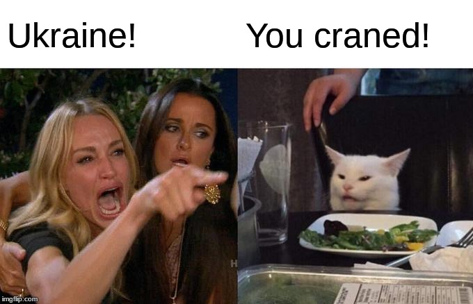 Woman Yelling At Cat | Ukraine! You craned! | image tagged in memes,woman yelling at cat,ukraine,crane | made w/ Imgflip meme maker