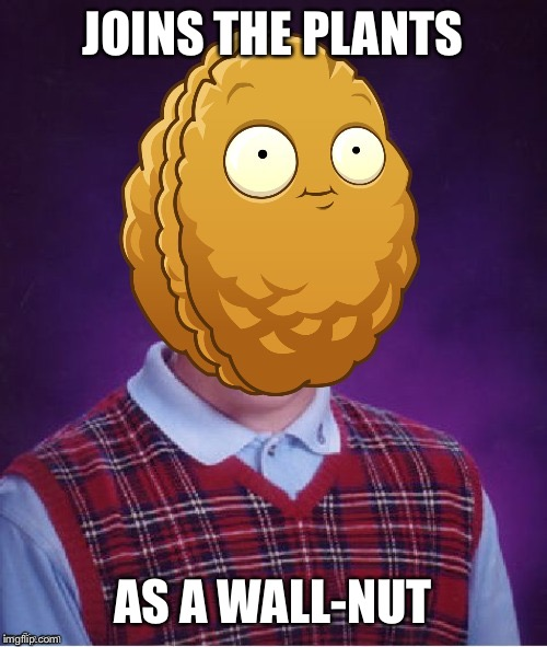 Bad Luck Wall-Nut | JOINS THE PLANTS AS A WALL-NUT | image tagged in bad luck wall-nut | made w/ Imgflip meme maker