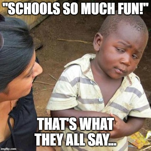 "Third World Skeptical Kid Meme | ""SCHOOLS SO MUCH FUN!"" THAT'S WHAT THEY ALL SAY... 