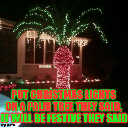 Palm Tree Christmas Lights | PUT CHRISTMAS LIGHTS ON A PALM TREE THEY SAID, IT WILL BE FESTIVE THEY SAID | image tagged in christmas lights,memes,face palm,merry christmas,one does not simply,aint nobody got time for that | made w/ Imgflip meme maker