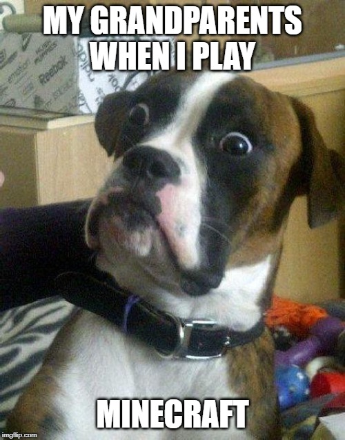Surprised Dog | MY GRANDPARENTS WHEN I PLAY MINECRAFT | image tagged in surprised dog | made w/ Imgflip meme maker