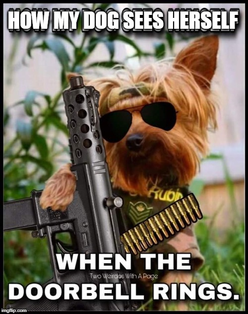Snoopy's cousin - Snipey | HOW MY DOG SEES HERSELF | image tagged in bad pun dog,dogs,security guard | made w/ Imgflip meme maker