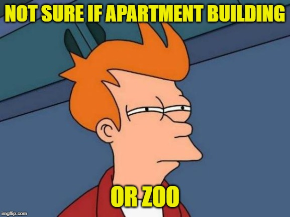 Futurama Fry Meme | NOT SURE IF APARTMENT BUILDING OR ZOO | image tagged in memes,futurama fry | made w/ Imgflip meme maker