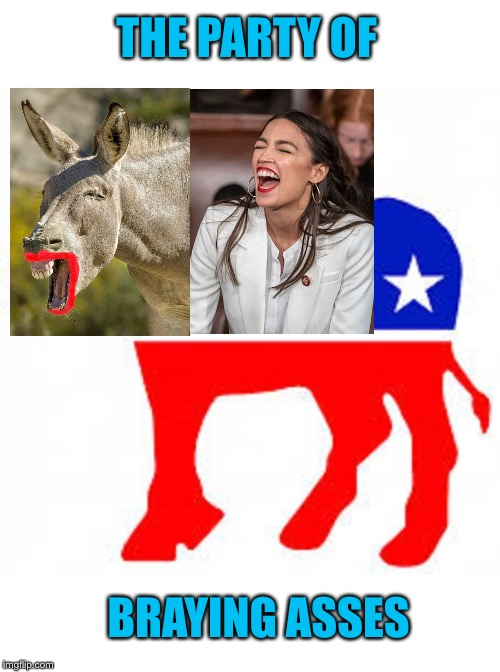 Democrat donkey |  THE PARTY OF; BRAYING ASSES | image tagged in democrat donkey,aoc | made w/ Imgflip meme maker