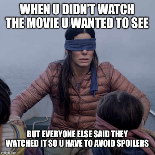 Bird Box |  WHEN U DIDN'T WATCH THE MOVIE U WANTED TO SEE; BUT EVERYONE ELSE SAID THEY WATCHED IT SO U HAVE TO AVOID SPOILERS | image tagged in memes,bird box | made w/ Imgflip meme maker