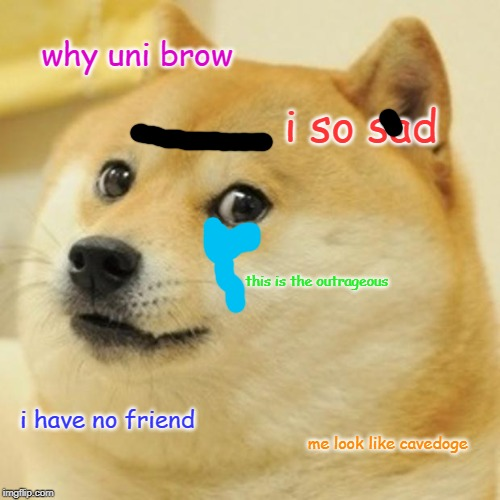 Doge Meme | why uni brow i so sad this is the outrageous i have no friend me look like cavedoge | image tagged in memes,doge | made w/ Imgflip meme maker