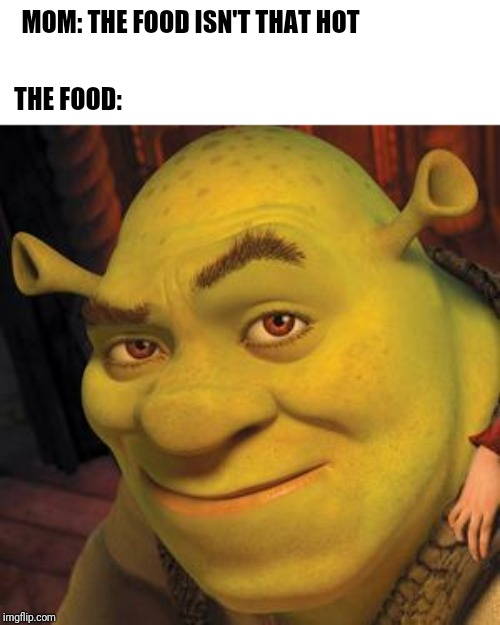 Yeah the food is pretty hot | MOM: THE FOOD ISN'T THAT HOT THE FOOD: | image tagged in hot shrek,the food isnt that hot | made w/ Imgflip meme maker