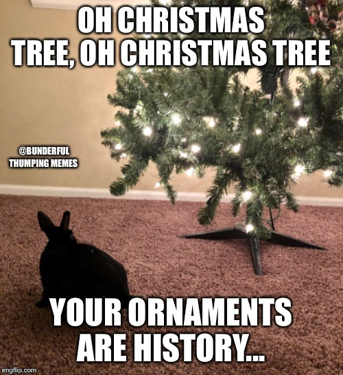 oh christmas tree bunny | OH CHRISTMAS TREE, OH CHRISTMAS TREE YOUR ORNAMENTS ARE HISTORY... @BUNDERFUL THUMPING MEMES | image tagged in bunny,rabbit,christmas | made w/ Imgflip meme maker