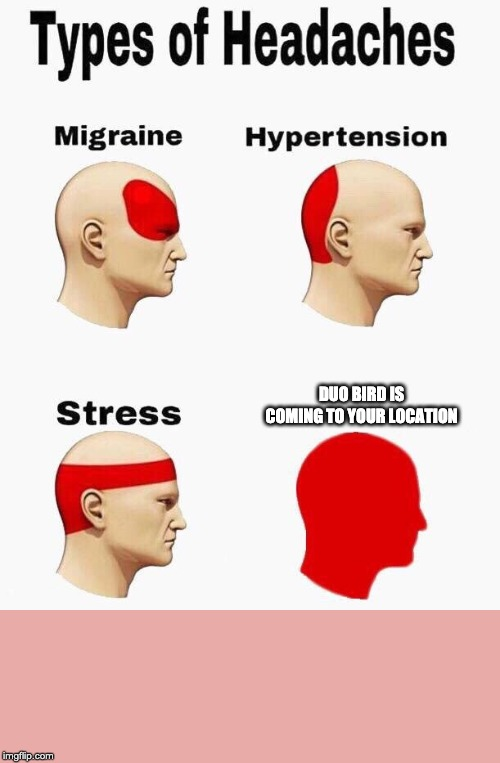 Headaches | DUO BIRD IS COMING TO YOUR LOCATION | image tagged in headaches | made w/ Imgflip meme maker