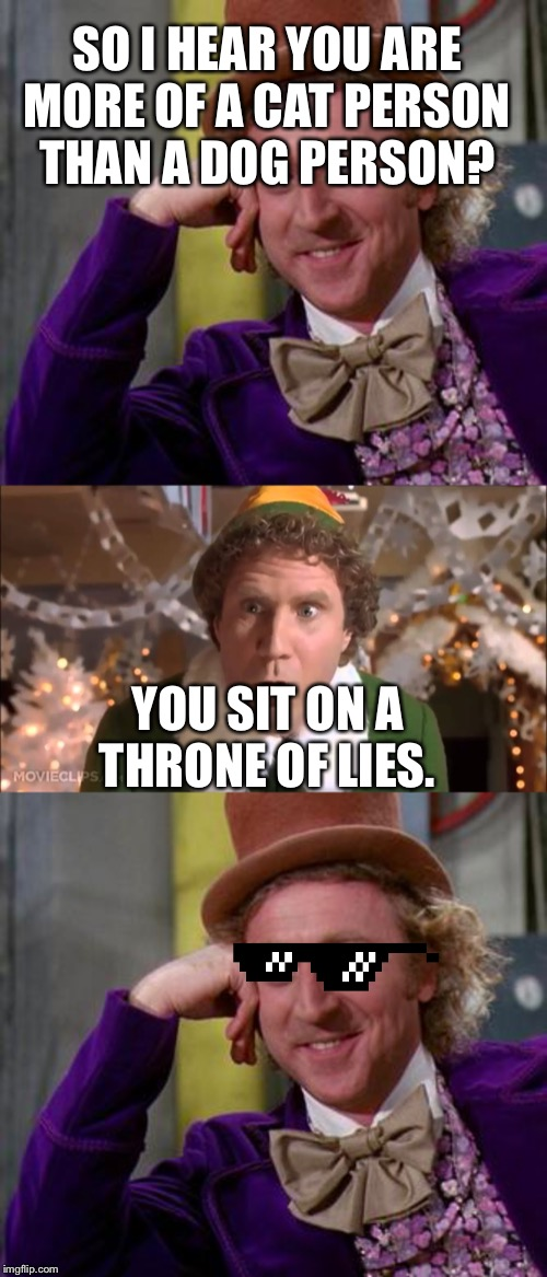 SO I HEAR YOU ARE MORE OF A CAT PERSON THAN A DOG PERSON? YOU SIT ON A THRONE OF LIES. | image tagged in funny | made w/ Imgflip meme maker