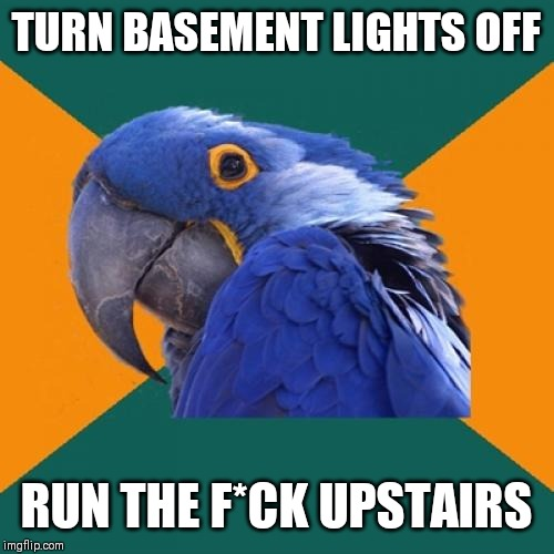 Paranoid Parrot |  TURN BASEMENT LIGHTS OFF; RUN THE F*CK UPSTAIRS | image tagged in memes,paranoid parrot | made w/ Imgflip meme maker