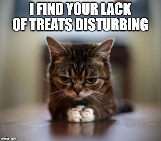 Treats | I FIND YOUR LACK OF TREATS DISTURBING | image tagged in cats,star wars | made w/ Imgflip meme maker