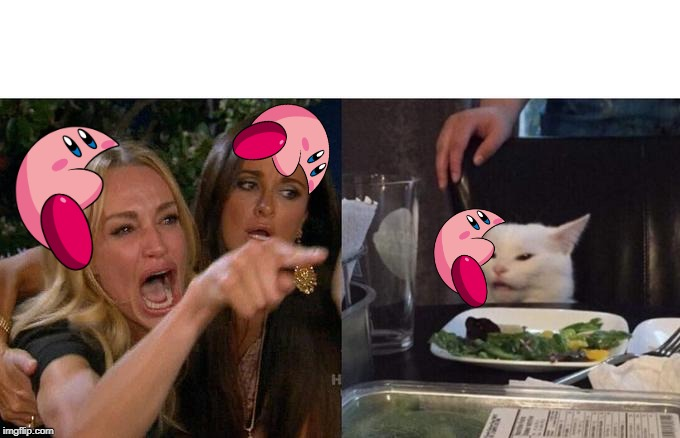 Woman Yelling At Cat Meme | image tagged in memes,woman yelling at cat | made w/ Imgflip meme maker