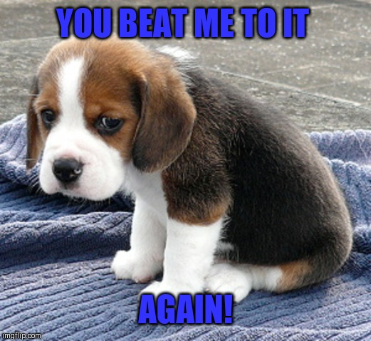 sad dog | YOU BEAT ME TO IT AGAIN! | image tagged in sad dog | made w/ Imgflip meme maker