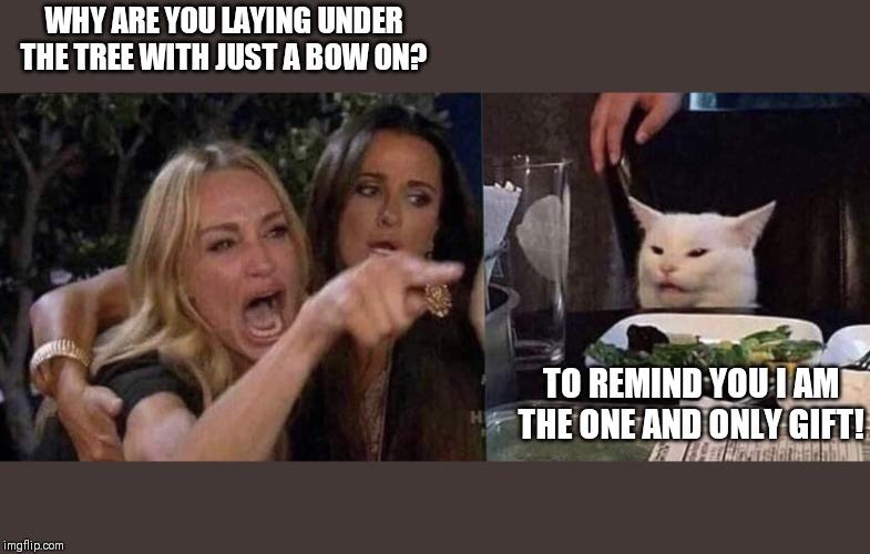 woman yelling at cat - Imgflip