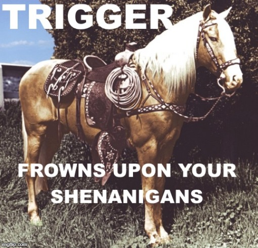 Triggered | image tagged in triggered,shenanigans,frown,horse,trigger | made w/ Imgflip meme maker