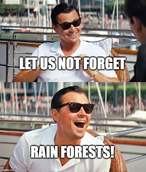 Leonardo Dicaprio Wolf Of Wall Street Meme | LET US NOT FORGET RAIN FORESTS! | image tagged in memes,leonardo dicaprio wolf of wall street | made w/ Imgflip meme maker