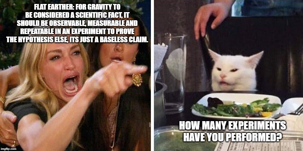 Smudge the cat | FLAT EARTHER: FOR GRAVITY TO BE CONSIDERED A SCIENTIFIC FACT, IT SHOULD BE OBSERVABLE, MEASURABLE AND REPEATABLE IN AN EXPERIMENT TO PROVE T | image tagged in smudge the cat | made w/ Imgflip meme maker