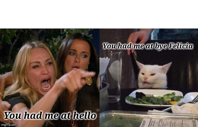 Woman Yelling At Cat Meme | You had me at hello You had me at bye Felicia | image tagged in memes,woman yelling at cat | made w/ Imgflip meme maker
