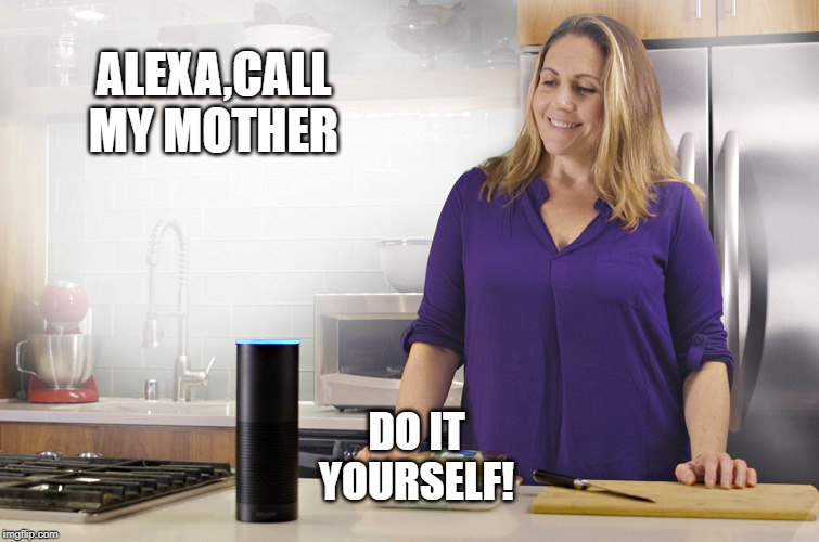 ALEXA,CALL MY MOTHER DO IT YOURSELF! | image tagged in alexa,lazy | made w/ Imgflip meme maker