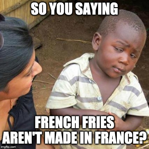 Third World Skeptical Kid | SO YOU SAYING FRENCH FRIES AREN'T MADE IN FRANCE? | image tagged in memes,third world skeptical kid | made w/ Imgflip meme maker
