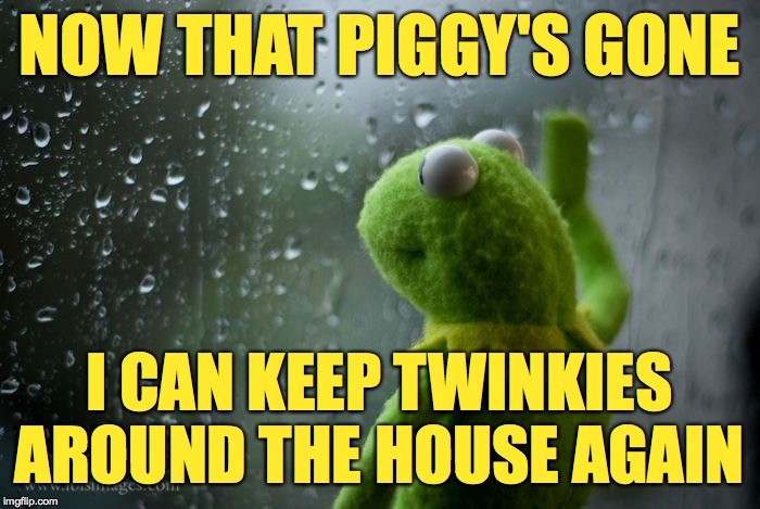 Life as it was meant to be  ( : |  NOW THAT PIGGY'S GONE; I CAN KEEP TWINKIES AROUND THE HOUSE AGAIN | image tagged in kermit window,memes,twinkies,miss piggy | made w/ Imgflip meme maker