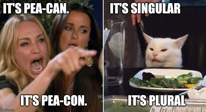 Woman Pointing at Cat | IT'S PEA-CAN.                  IT'S SINGULAR IT'S PEA-CON.                  IT'S PLURAL | image tagged in woman pointing at cat | made w/ Imgflip meme maker