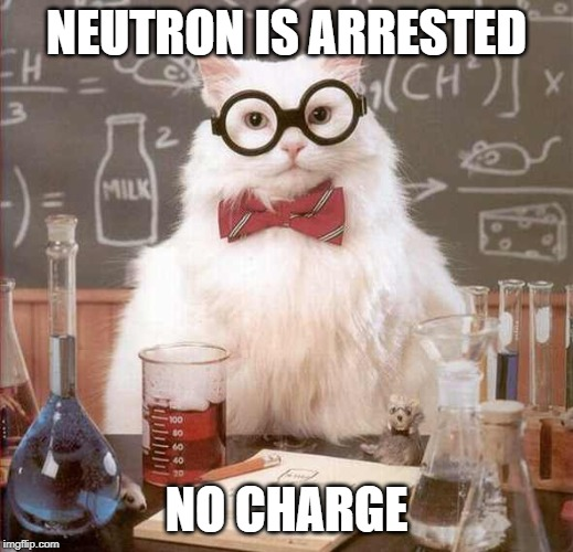Cat Scientist | NEUTRON IS ARRESTED NO CHARGE | image tagged in cat scientist,memes,funny memes,science,cats | made w/ Imgflip meme maker