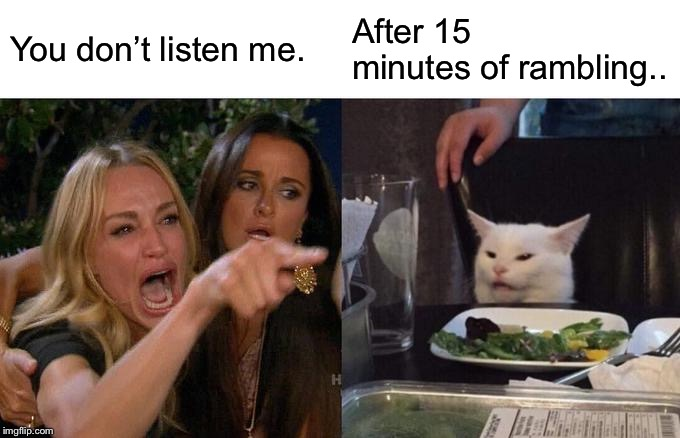 Woman Yelling At Cat Meme | You don't listen me. After 15 minutes of rambling.. | image tagged in memes,woman yelling at cat | made w/ Imgflip meme maker