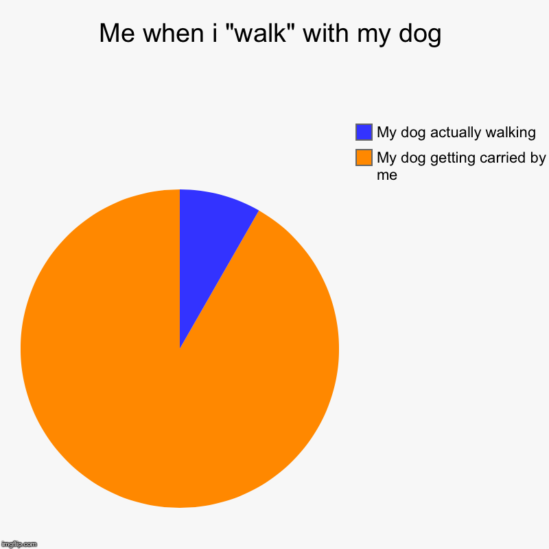 "Me when i ""walk"" with my dog 