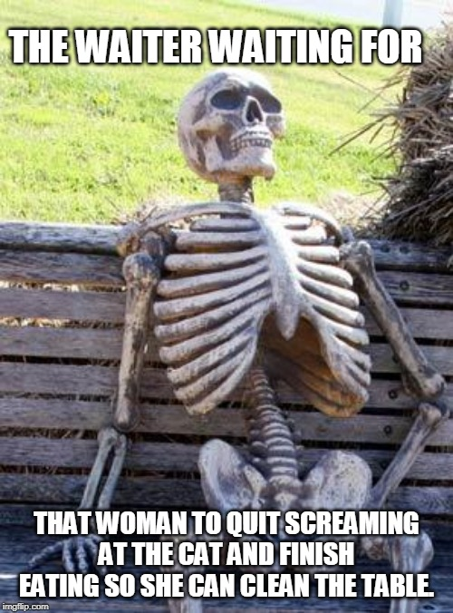 Waiting Skeleton Meme |  THE WAITER WAITING FOR; THAT WOMAN TO QUIT SCREAMING AT THE CAT AND FINISH EATING SO SHE CAN CLEAN THE TABLE. | image tagged in woman yelling at cat,waiting skeleton,still waiting | made w/ Imgflip meme maker