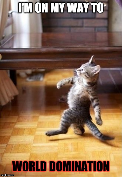 Cool Cat Stroll |  I'M ON MY WAY TO; WORLD DOMINATION | image tagged in memes,cool cat stroll | made w/ Imgflip meme maker
