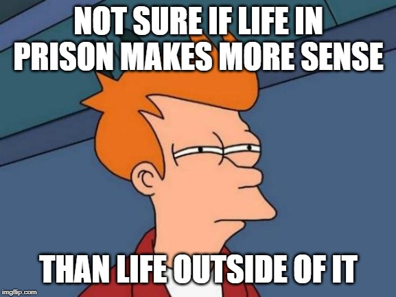 Really tho | NOT SURE IF LIFE IN PRISON MAKES MORE SENSE THAN LIFE OUTSIDE OF IT | image tagged in memes,futurama fry | made w/ Imgflip meme maker