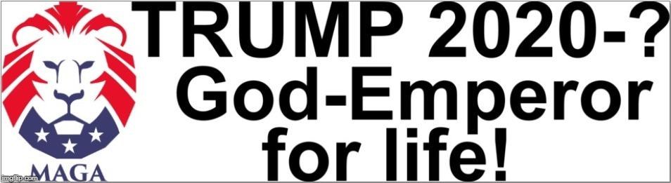 Bumper sticker idea. 100 upvotes and I'll have this printed. | image tagged in maga,politics,bumper sticker,trump | made w/ Imgflip meme maker