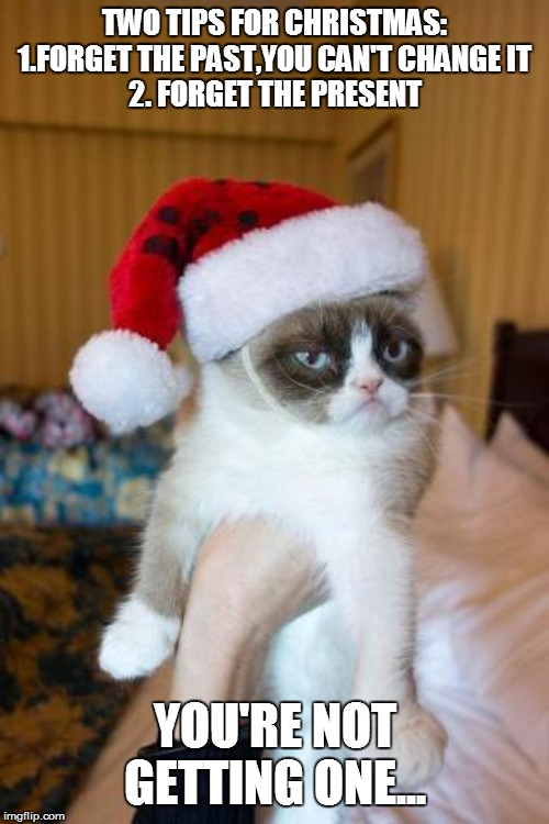 Grumpy Cat Christmas | TWO TIPS FOR CHRISTMAS: 1.FORGET THE PAST,YOU CAN'T CHANGE IT 2. FORGET THE PRESENT YOU'RE NOT GETTING ONE... | image tagged in grumpy cat christmas,christmas memes,funny memes,merry christmas,grumpy cat,funny animals | made w/ Imgflip meme maker