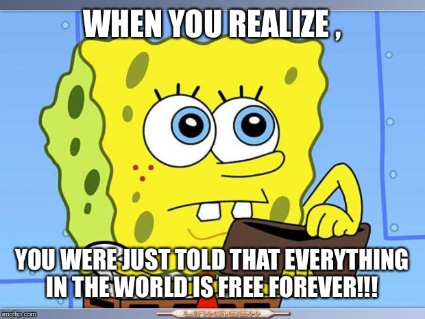 Sponge Bob Wallet | WHEN YOU REALIZE , YOU WERE JUST TOLD THAT EVERYTHING IN THE WORLD IS FREE FOREVER!!! | image tagged in sponge bob wallet | made w/ Imgflip meme maker