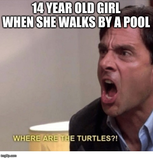 14 YEAR OLD GIRL WHEN SHE WALKS BY A POOL | image tagged in where are the turtles | made w/ Imgflip meme maker