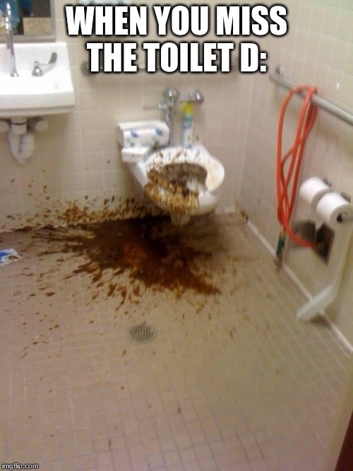 Girls poop too | WHEN YOU MISS THE TOILET D: | image tagged in girls poop too | made w/ Imgflip meme maker