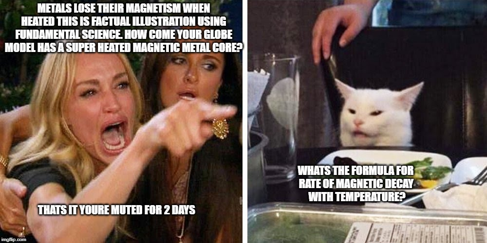 Smudge the cat | METALS LOSE THEIR MAGNETISM WHEN HEATED THIS IS FACTUAL ILLUSTRATION USING FUNDAMENTAL SCIENCE. HOW COME YOUR GLOBE MODEL HAS A SUPER HEATED | image tagged in smudge the cat | made w/ Imgflip meme maker