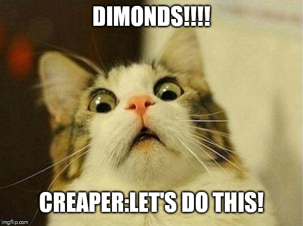 Scared Cat Meme | DIMONDS!!!! CREAPER:LET'S DO THIS! | image tagged in memes,scared cat | made w/ Imgflip meme maker