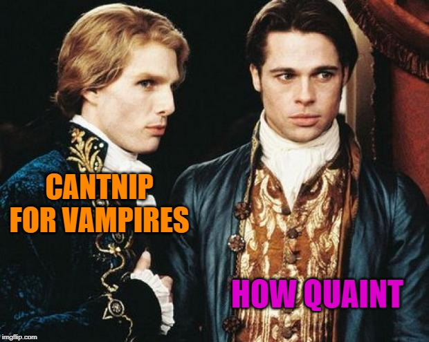 interview vampire | CANTNIP FOR VAMPIRES HOW QUAINT | image tagged in interview vampire | made w/ Imgflip meme maker