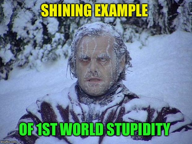 Jack Nicholson The Shining Snow Meme | SHINING EXAMPLE OF 1ST WORLD STUPIDITY | image tagged in memes,jack nicholson the shining snow | made w/ Imgflip meme maker