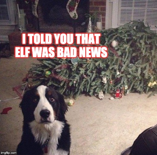 Dog Christmas Tree | I TOLD YOU THAT ELF WAS BAD NEWS | image tagged in dog christmas tree | made w/ Imgflip meme maker