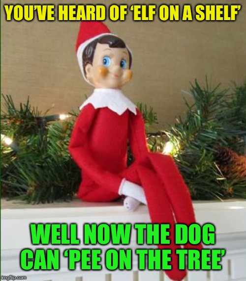 Elf on a Shelf | YOU'VE HEARD OF 'ELF ON A SHELF' WELL NOW THE DOG CAN 'PEE ON THE TREE' | image tagged in elf on a shelf | made w/ Imgflip meme maker